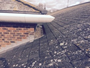 West Sussex Roofing Specialist